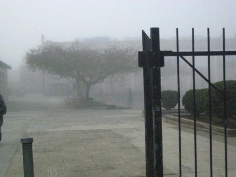 Entrance to the Fog by rollingWater