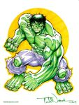 The Incredible Hulk by ToddNauck