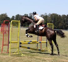 STOCK Showjumping 370 by aussiegal7