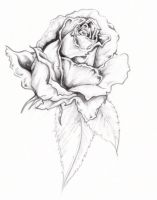 Rose Tattoo by anghellic7