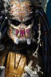 Predator Front Close Up Shot by MyCosPlayPhotos