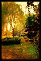 Golden Afternoon by elanordh