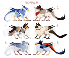 Birds adopts [AUCTION] Closed by NoahAsai
