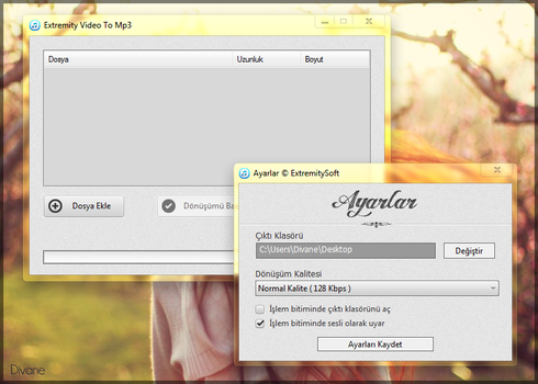 Video to MP3 Converter Project by Divane34