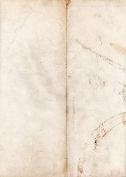 Grungy paper texture v.3 by bashcorpo