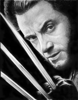 Wolverine by francoclun