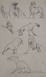critter sketches by Sythgara