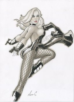 Black Canary 1 by MarioChavez