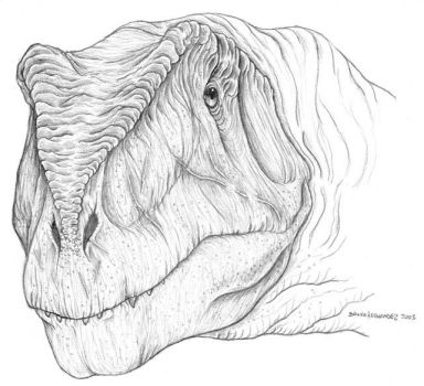 Giganotosaurus head by Christoferson