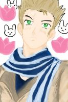 APH Netherlands HECK YEA by FieryFiesta