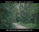 forest2 by tbg-stock-images