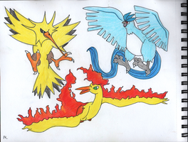 Legendary Bird Pokemon Zapdos Moltres and Articuno by Megalomaniacaly