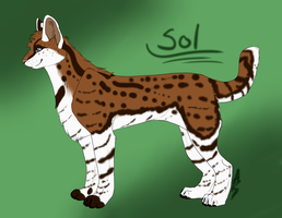 Sol Serval Form by littlezombiesol