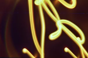 party -lomo 008 by fluorescent2892