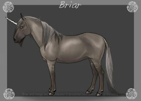 Briar by sandeyes13