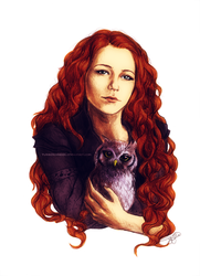 The Fox and the Owl by YurikoSchneide