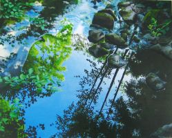 reflections on the surface by pemmi