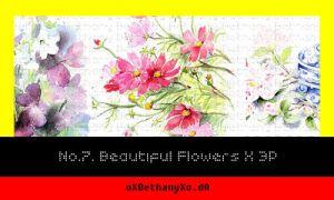 Flower Image Pack by oXBethanyXo
