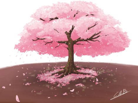 Cherry Blossom by QueenOfSpade