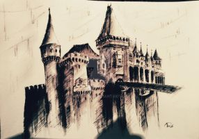 Ink drawing The Castle of the Huniaz 2 -photo edit by Artsyz123