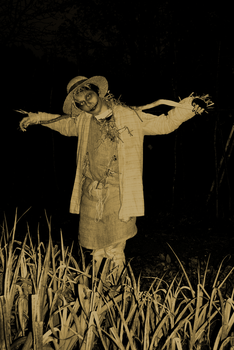 Scarecrow by MichaelSilverleaf
