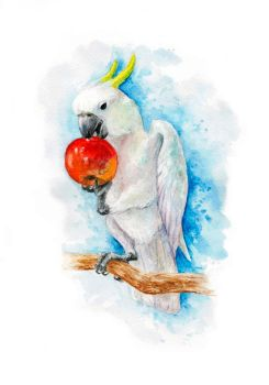 White cockatoo by Egretink