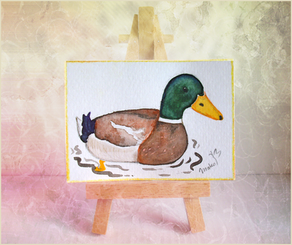 Variation #1 - 1. Introduction - Duck by Leviana