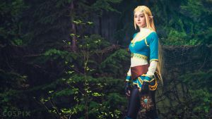 Princess Zelda - Breath of the Wild by RACHEL-NYCOLE
