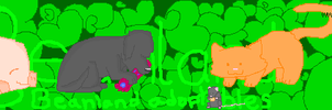 Adoptable site header thingy by MagikBeanz