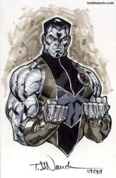 Colossus grayscale by ToddNauck