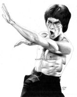 Bruce Lee by troydodd