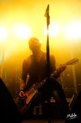 Backyard Babies 3 by Muehlebach22DEGREE