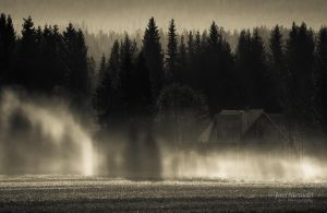 Shadows On The Mist by JoniNiemela