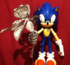 Sonic The Hedgehog With A Silver Rose From 2012 by TotallyDeviantLisa