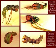 Lovecraft's Bugs by zombiequadrille