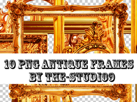 16 PNG Antique Photo Frames by the-studio9