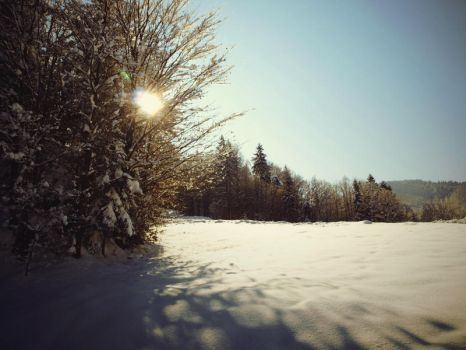 Winter Time I by belovah