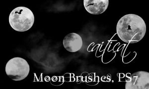 Moon Brushes for PS by caiticat
