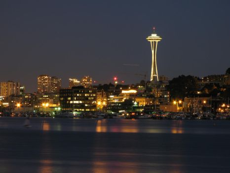 Space Needle by Cobra740