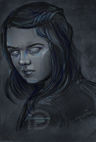 Game Of Thrones//Arya// Blind by vyrenia