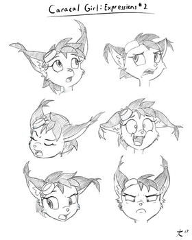 Caracal Girl: Expressions #2 by DeannART