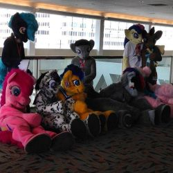 Post-Bronycon Fursuit Lineup by krysto2012