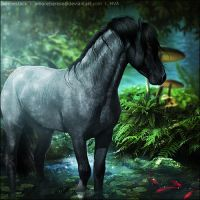 Blue Amazon  by VIP-EquineArt