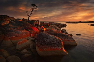Bay of fires by Michaelthien