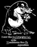 I Saw the Pandorca by driver16