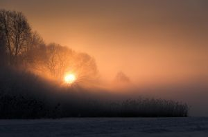 Cold Winter Morning 7 by sulevlange