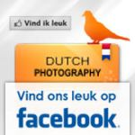 Facebook Dutch-Photography by CrystalGraphic