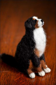 Bernese Mountain Dog by nikkiburr