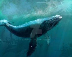 whale speedpaint by snowsoulls