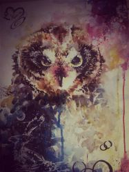 Owl by Amio-m